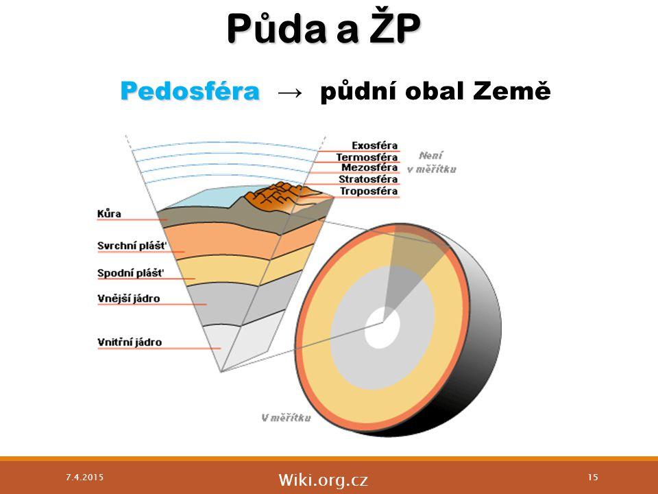 P ů da a Ž P Pedosféra Pedosféra → půdní obal Země Wiki.org.cz 7.4.2015 15