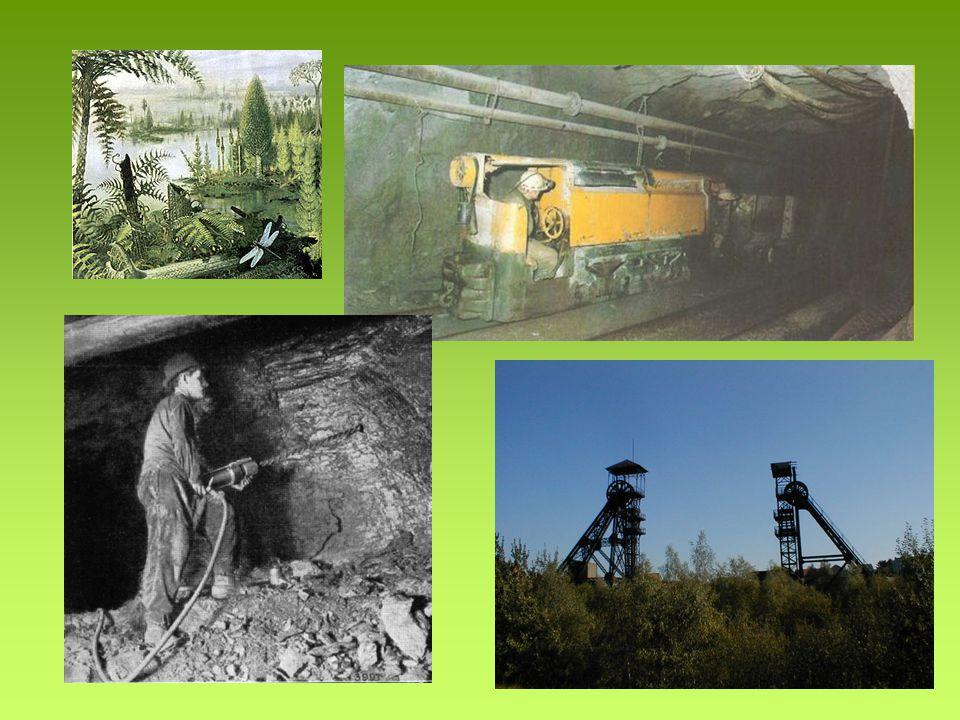 Hnědé uhlí Hnědé uhlí – hornina Mladší než černé uhlí Těží se v povrchových dolech
