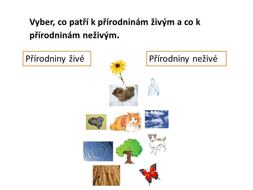 Vyber, co patří k přírodninám živým a co k přírodninám neživým. Přírodniny živéPřírodniny neživé