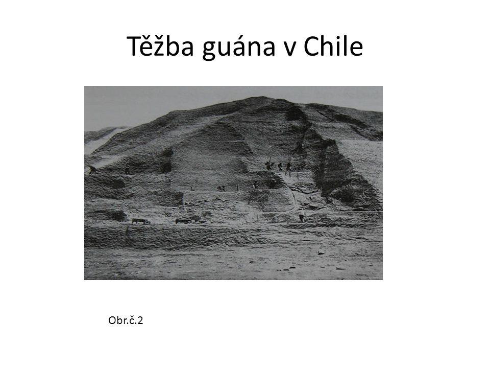 Těžba guána v Chile Obr.č.2