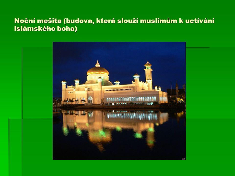 Noční mešita (budova, která slouží muslimům k uctívání islámského boha)