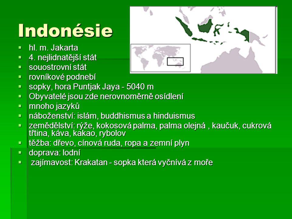 Indonésie  hl. m. Jakarta  4. nejlidnatější stát  souostrovní stát  rovníkové podnebí  sopky, hora Puntjak Jaya - 5040 m  Obyvatelé jsou zde ner