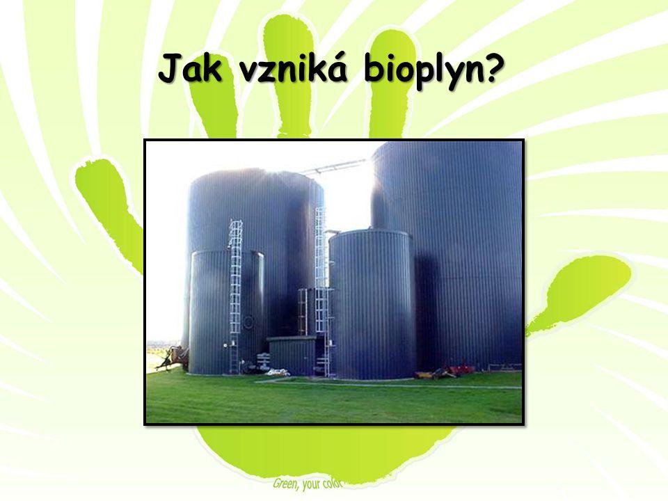 Jak vzniká bioplyn?