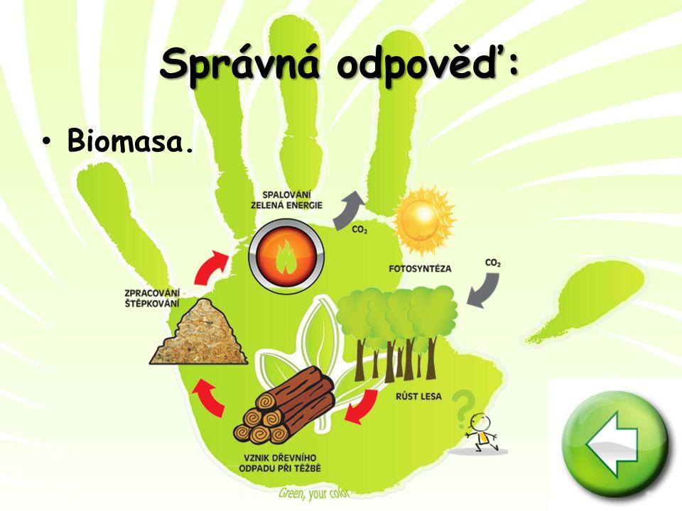 Správná odpověď: Biomasa.