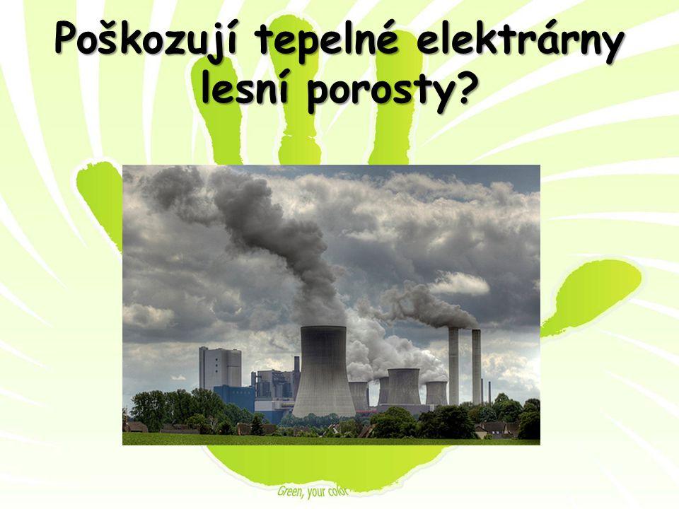 Poškozují tepelné elektrárny lesní porosty