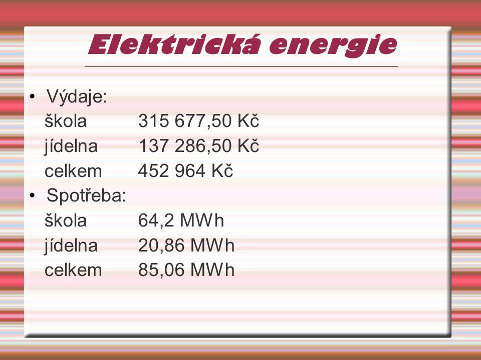 Elektrická energie Výdaje: škola315 677,50 Kč jídelna137 286,50 Kč celkem452 964 Kč Spotřeba: škola64,2 MWh jídelna20,86 MWh celkem85,06 MWh