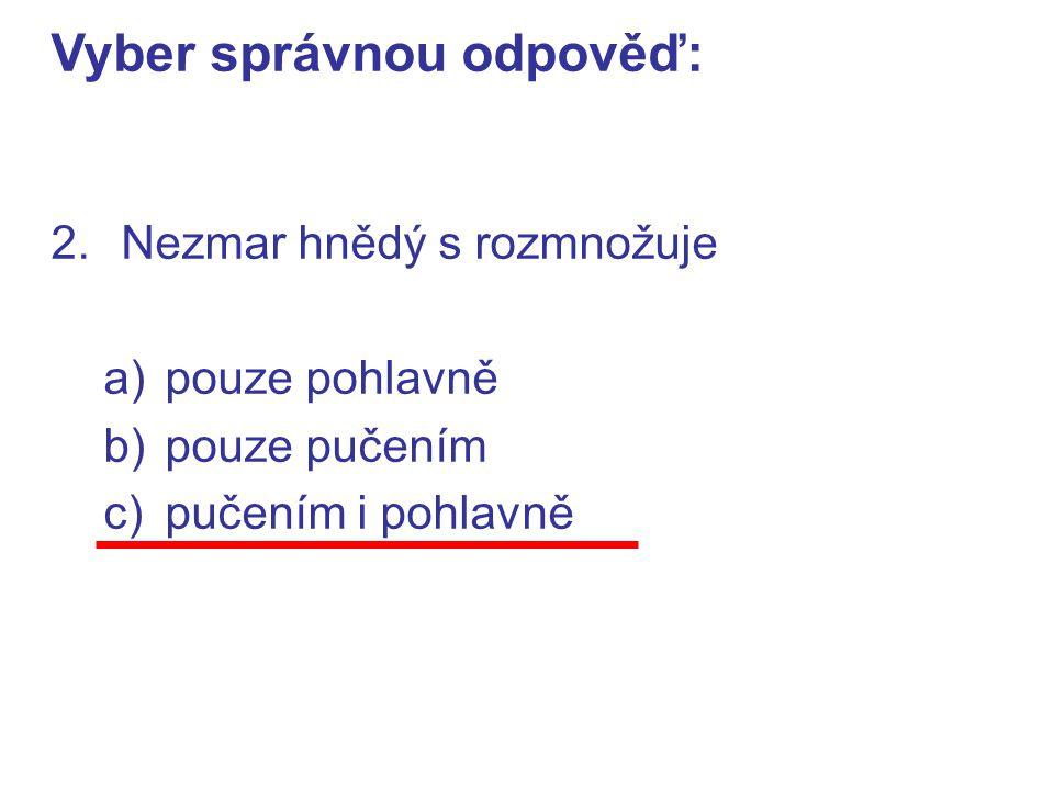 2.Nezmar hnědý s rozmnožuje a)pouze pohlavně b)pouze pučením c)pučením i pohlavně Vyber správnou odpověď:
