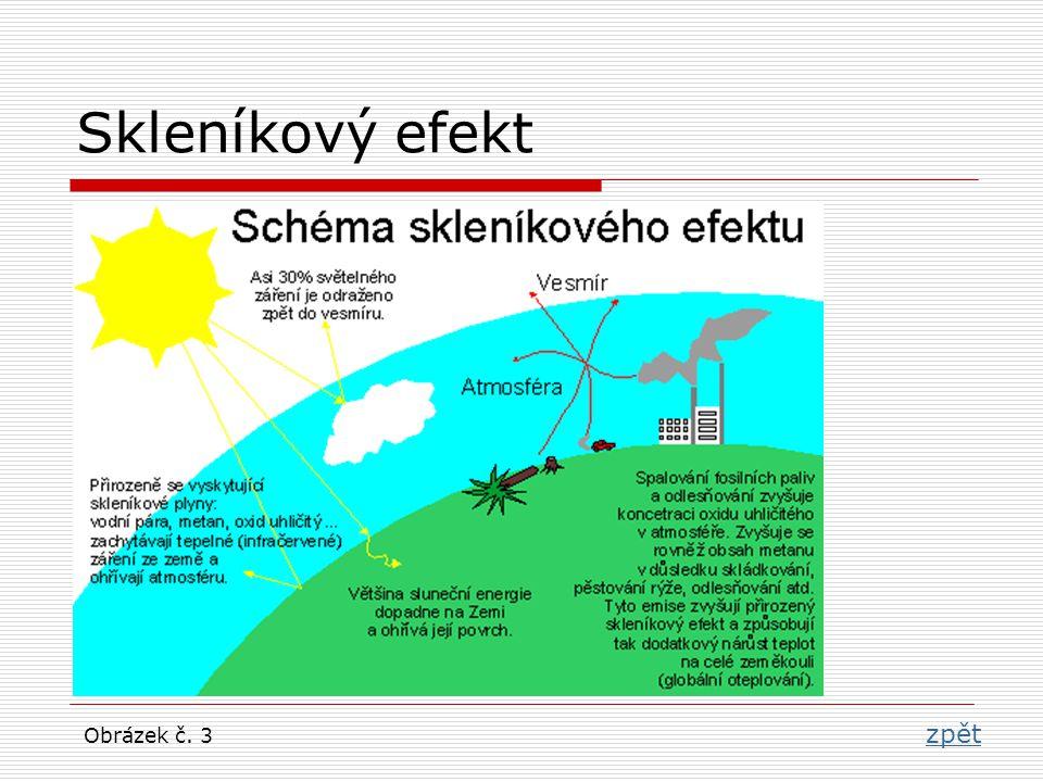 Fotosyntéza zpět Obrázek č. 4