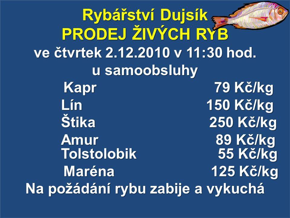 Rybářství Dujsík PRODEJ ŽIVÝCH RYB ve čtvrtek 2.12.2010 v 11:30 hod. u samoobsluhy Kapr 79 Kč/kg Kapr 79 Kč/kg Lín 150 Kč/kg Štika 250 Kč/kg Amur 89 K