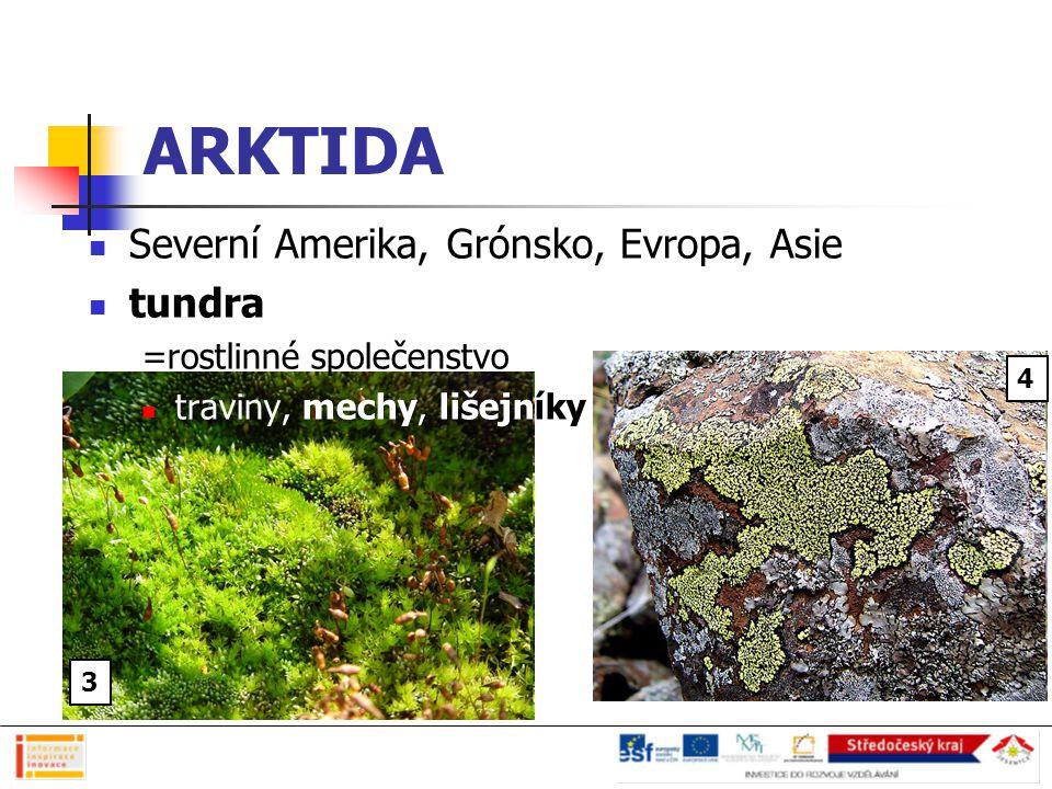 ARKTIDA Severní Amerika, Grónsko, Evropa, Asie tundra =rostlinné společenstvo traviny, mechy, lišejníky Učební materiál vznikl v rámci projektu INFORM