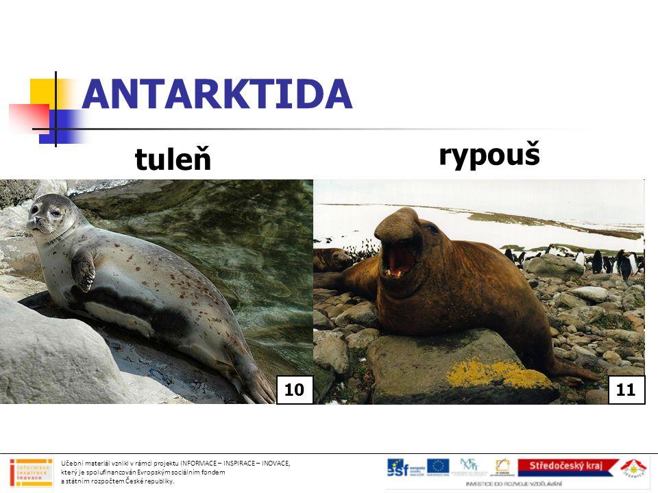Použité obrázky: obr.č.1- http://commons.wikimedia.org/wiki/File:Arthur_Harbor_-_Antarctica.JPGhttp://commons.wikimedia.org/wiki/File:Arthur_Harbor_-_Antarctica.JPG Volně šiřitelné obr.č.2- http://commons.wikimedia.org/wiki/File:LocationPolarRegions.pnghttp://commons.wikimedia.org/wiki/File:LocationPolarRegions.png Volně šiřitelné obr.č.3- http://commons.wikimedia.org/wiki/File:Moos_5769.jpghttp://commons.wikimedia.org/wiki/File:Moos_5769.jpg Creative Commons Attribution-Share Alike 3.0 Unported license obr.č.4- http://commons.wikimedia.org/wiki/File:Rhizocarpon_geographicum01.jpghttp://commons.wikimedia.org/wiki/File:Rhizocarpon_geographicum01.jpg Creative Commons Attribution-Share Alike 3.0 Unported license obr.č.5- Vlastní archiv autorky obr.č.6- Vlastní archiv autorky obr.č.7- Vlastní archiv autorky obr.č.8- Vlastní archiv autorky obr.č.9- Vlastní archiv autorky obr.č.10- http://commons.wikimedia.org/wiki/File:Seehund2cele4.jpghttp://commons.wikimedia.org/wiki/File:Seehund2cele4.jpg Creative Commons Attribution-Share Alike 3.0 Unported license obr.č.11- http://commons.wikimedia.org/wiki/File:Mirounga_leonina_male.JPGhttp://commons.wikimedia.org/wiki/File:Mirounga_leonina_male.JPG Creative Commons Attribution-Share Alike 3.0 Unported license Učební materiál vznikl v rámci projektu INFORMACE – INSPIRACE – INOVACE, který je spolufinancován Evropským sociálním fondem a státním rozpočtem České republiky.