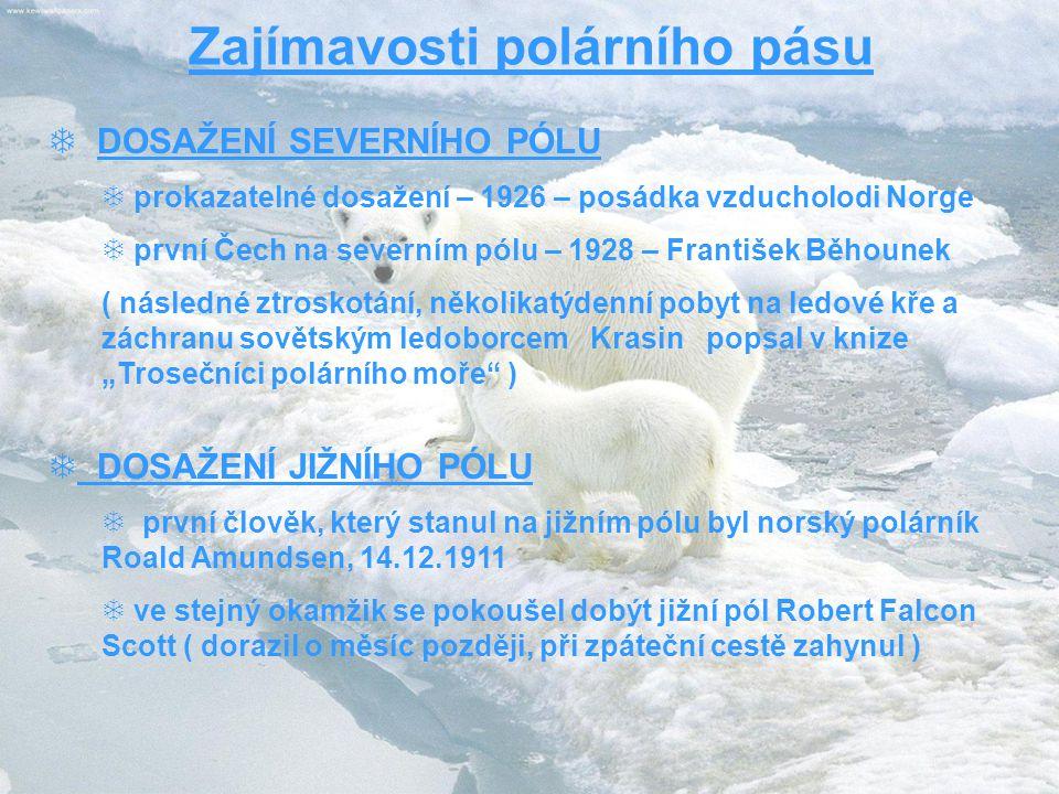 """Zajímavosti polárního pásu  DOSAŽENÍ SEVERNÍHO PÓLU  prokazatelné dosažení – 1926 – posádka vzducholodi Norge  první Čech na severním pólu – 1928 – František Běhounek ( následné ztroskotání, několikatýdenní pobyt na ledové kře a záchranu sovětským ledoborcem Krasin popsal v knize """"Trosečníci polárního moře )  DOSAŽENÍ JIŽNÍHO PÓLU  první člověk, který stanul na jižním pólu byl norský polárník Roald Amundsen, 14.12.1911  ve stejný okamžik se pokoušel dobýt jižní pól Robert Falcon Scott ( dorazil o měsíc později, při zpáteční cestě zahynul )"""