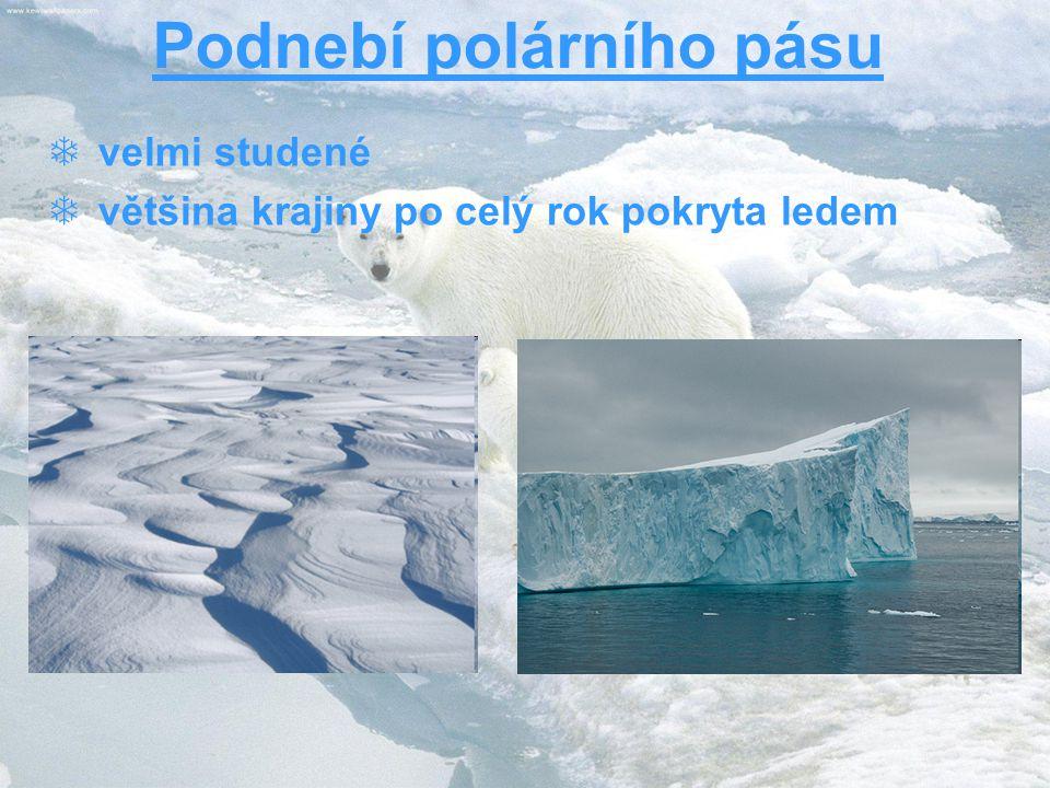 Podnebí polárního pásu  velmi studené  většina krajiny po celý rok pokryta ledem