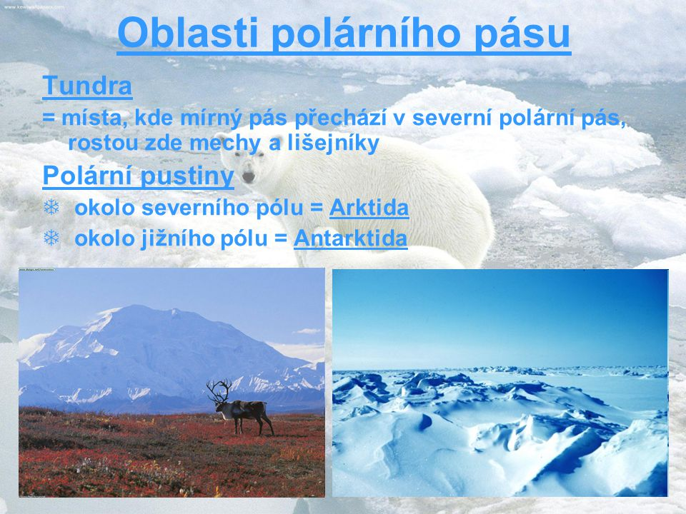 Oblasti polárního pásu Tundra = místa, kde mírný pás přechází v severní polární pás, rostou zde mechy a lišejníky Polární pustiny  okolo severního pólu = Arktida  okolo jižního pólu = Antarktida