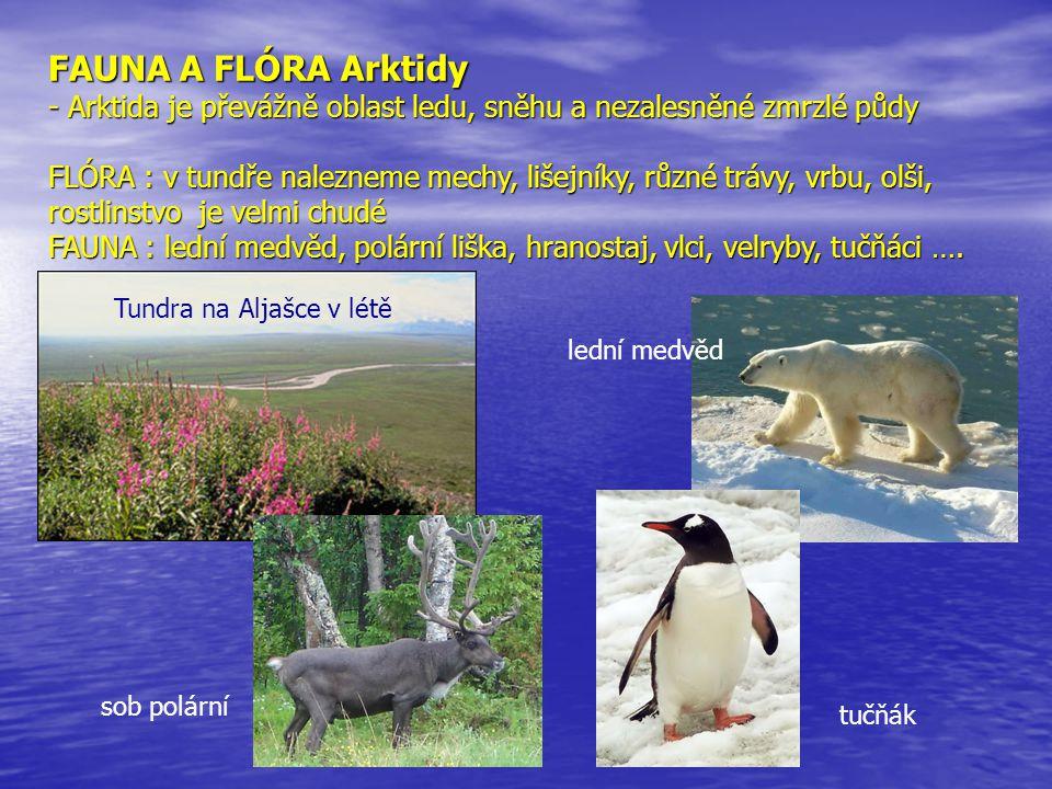FAUNA A FLÓRA Arktidy - Antarktida je nejchladnější kontinent na Zemi FLÓRA : byly zde objeveny pouze tři druhy kvetoucích rostlin, více než 50 druhů mechů a lišejníků FAUNA : hojnost mořských ptáků (chaluhy, albatrosi, tučňáci), v okolních mořích spousta drobných korýšů, kytovci, rypouši, tuleni Satelitní obrázek Antarktidy Tučňák císařský Albatros stěhovavý Keporkak