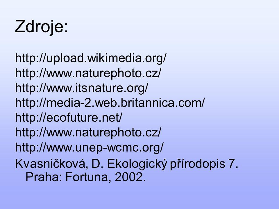 Zdroje: http://upload.wikimedia.org/ http://www.naturephoto.cz/ http://www.itsnature.org/ http://media-2.web.britannica.com/ http://ecofuture.net/ http://www.naturephoto.cz/ http://www.unep-wcmc.org/ Kvasničková, D.
