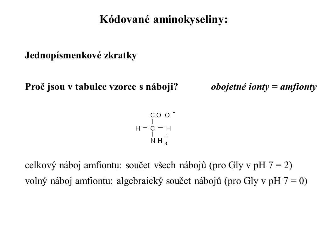 Kódované aminokyseliny: Jednopísmenkové zkratky Proč jsou v tabulce vzorce s náboji? obojetné ionty = amfionty celkový náboj amfiontu: součet všech ná