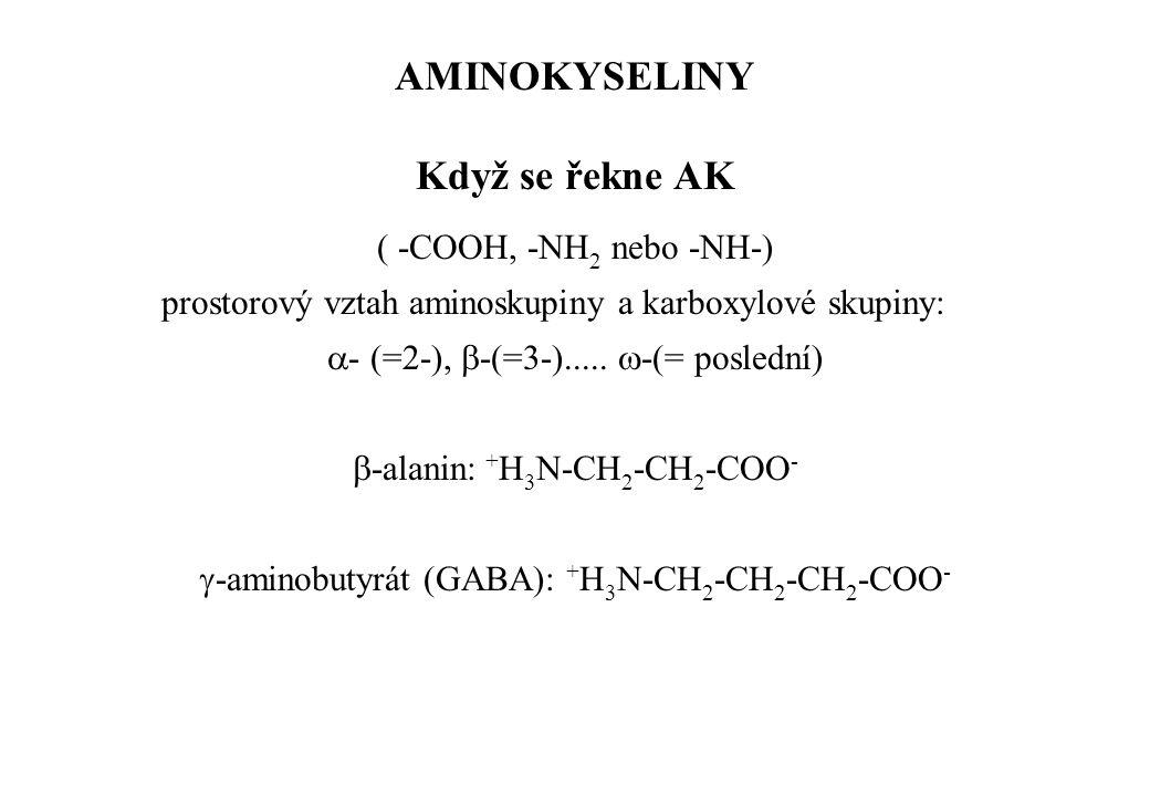( -COOH, -NH 2 nebo -NH-) prostorový vztah aminoskupiny a karboxylové skupiny:  - (=2-),  -(=3-).....  -(= poslední)  -alanin: + H 3 N-CH 2 -CH 2
