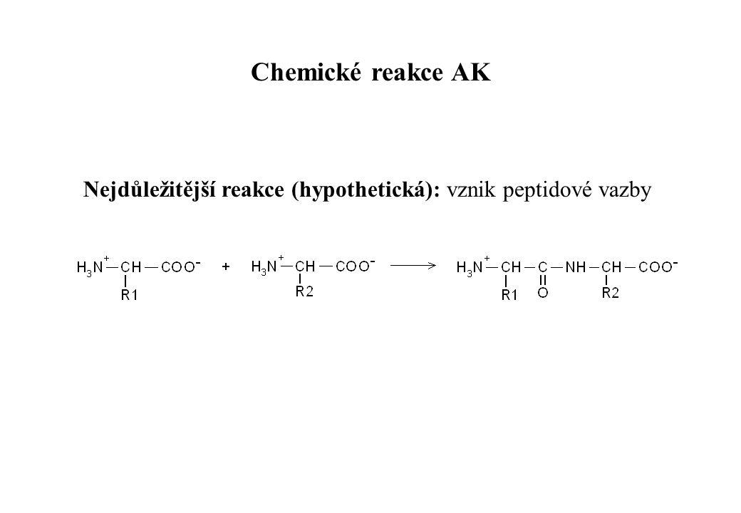 Nejdůležitější reakce (hypothetická): vznik peptidové vazby Chemické reakce AK