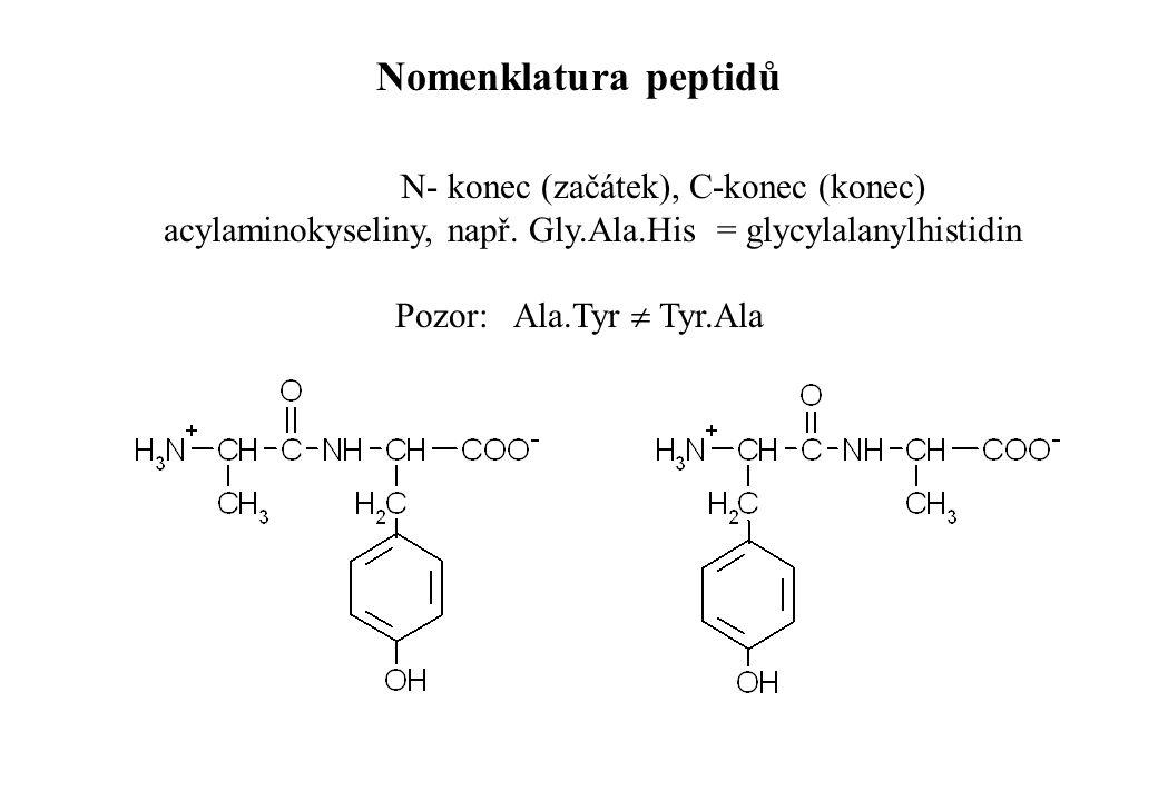 N- konec (začátek), C-konec (konec) acylaminokyseliny, např. Gly.Ala.His = glycylalanylhistidin Pozor: Ala.Tyr  Tyr.Ala Nomenklatura peptidů
