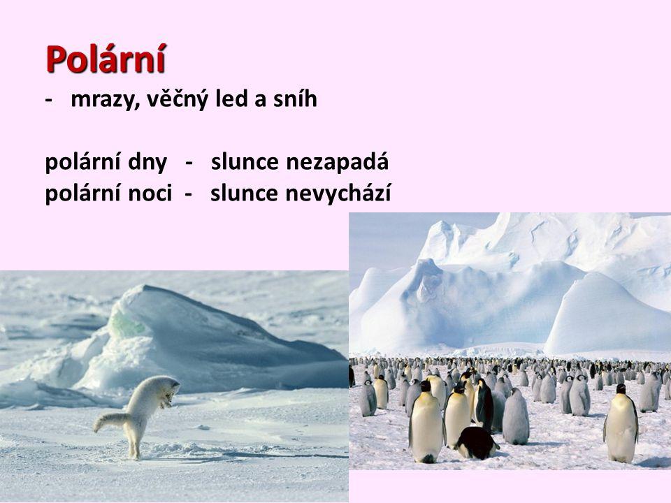 Polární - mrazy, věčný led a sníh polární dny - slunce nezapadá polární noci - slunce nevychází