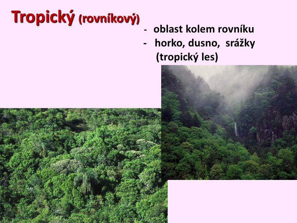 - oblast kolem rovníku - horko, dusno, srážky (tropický les) Tropický ( rovníkový )