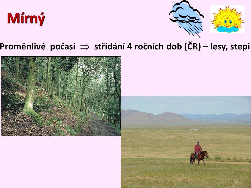 Mírný Mírný Proměnlivé počasí  střídání 4 ročních dob (ČR) – lesy, stepi