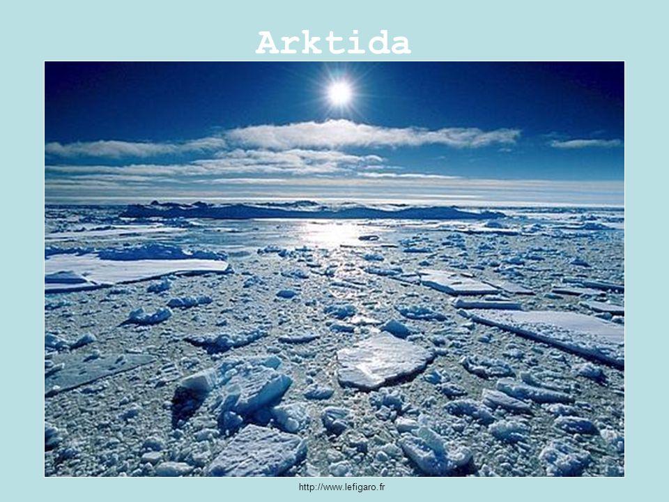 Arktida http://www.lefigaro.fr