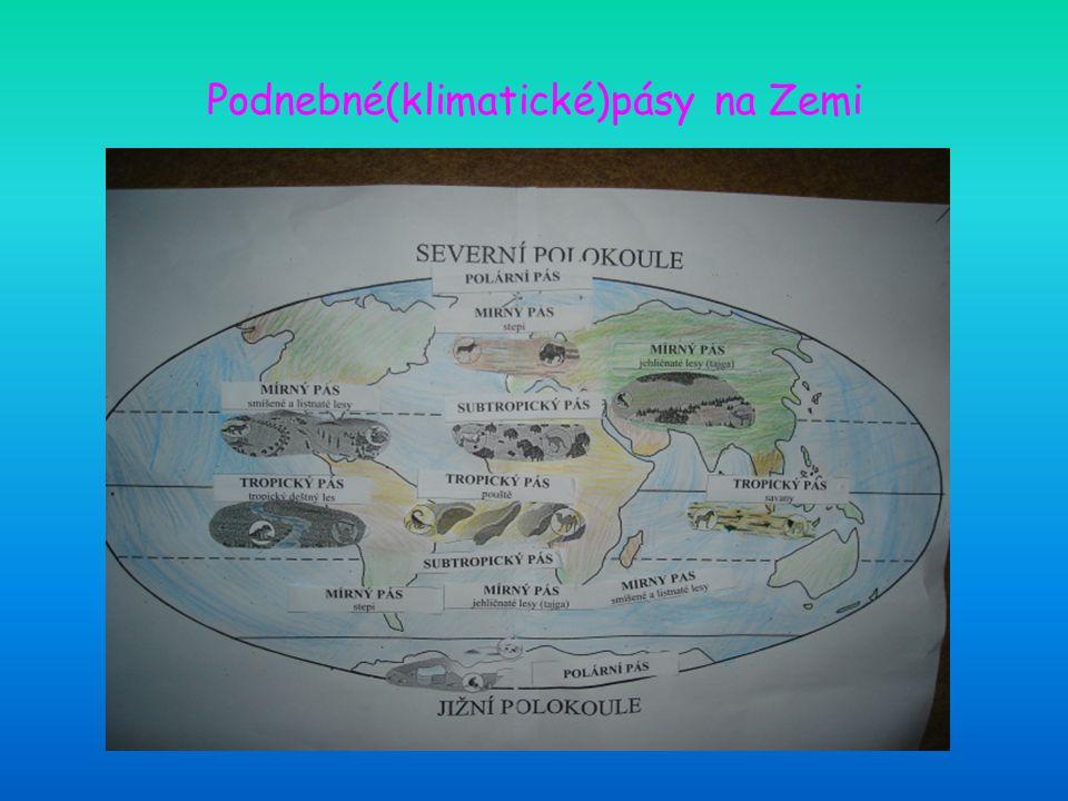 Podnebné(klimatické)pásy na Zemi