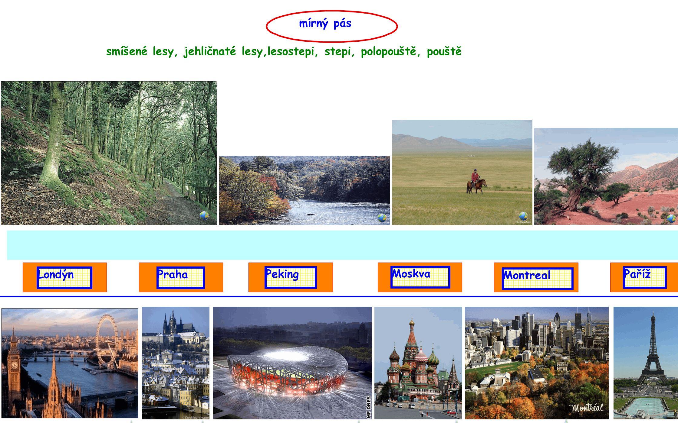 mírný pás LondýnPraha Paříž Moskva Peking Montreal smíšené lesy, jehličnaté lesy,lesostepi, stepi, polopouště, pouště