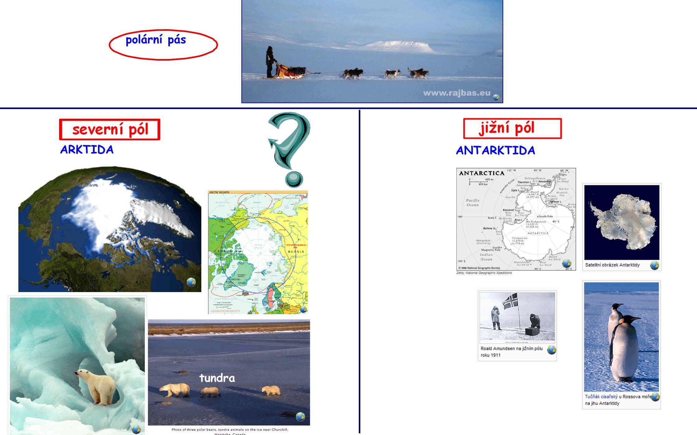 polární pás ARKTIDA ANTARKTIDA tundra