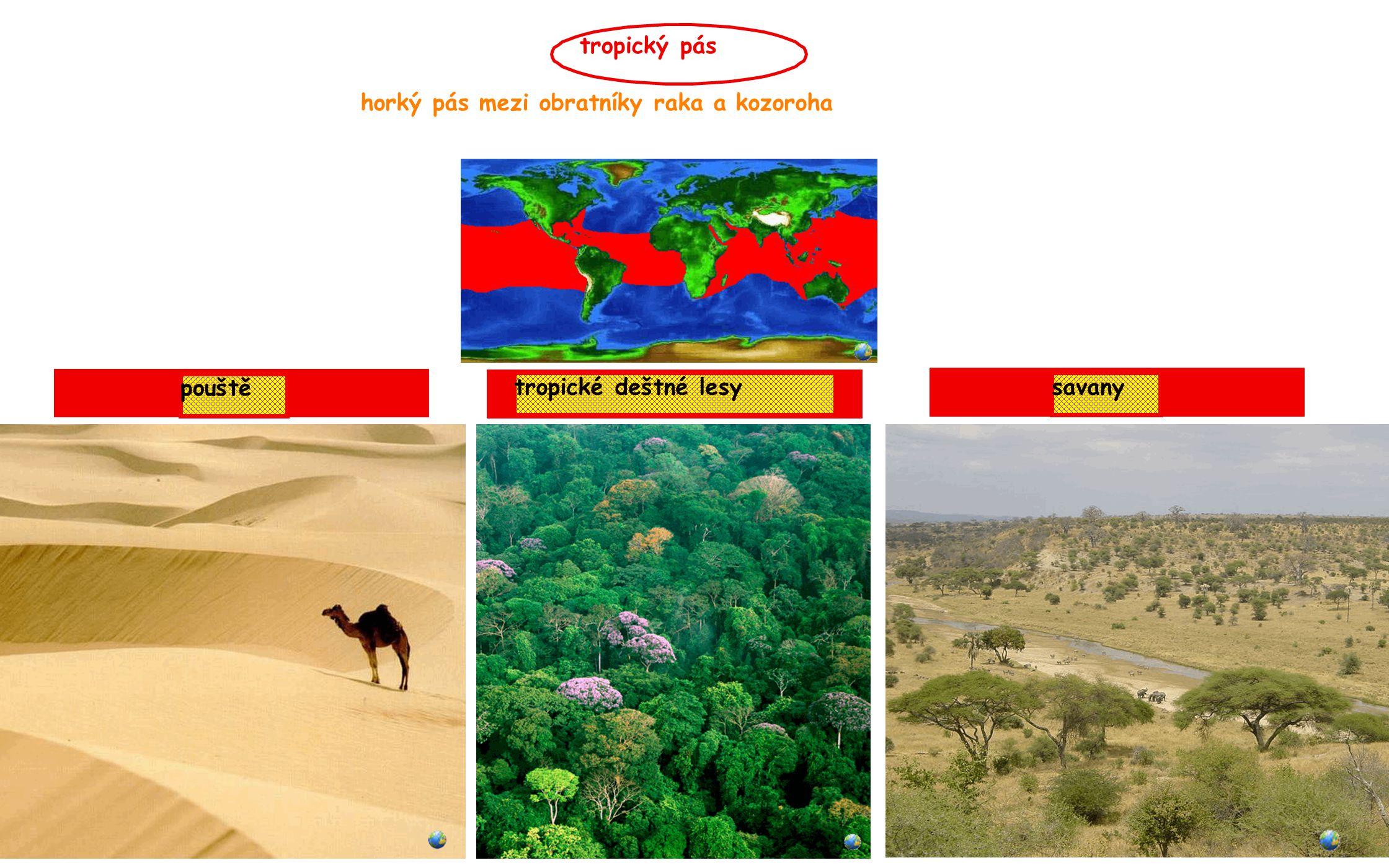 tropický pás tropické deštné lesysavany pouště horký pás mezi obratníky raka a kozoroha