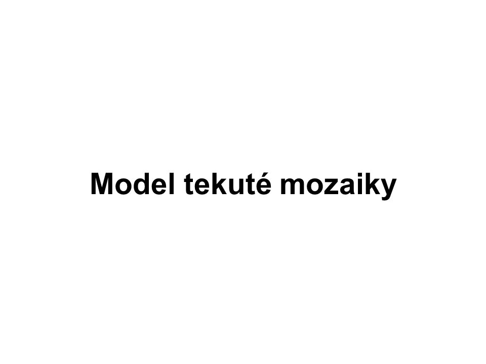 Model tekuté mozaiky