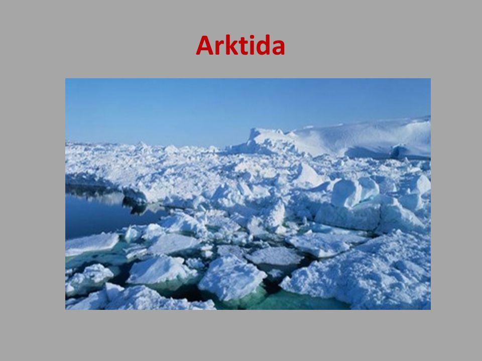 Arktida