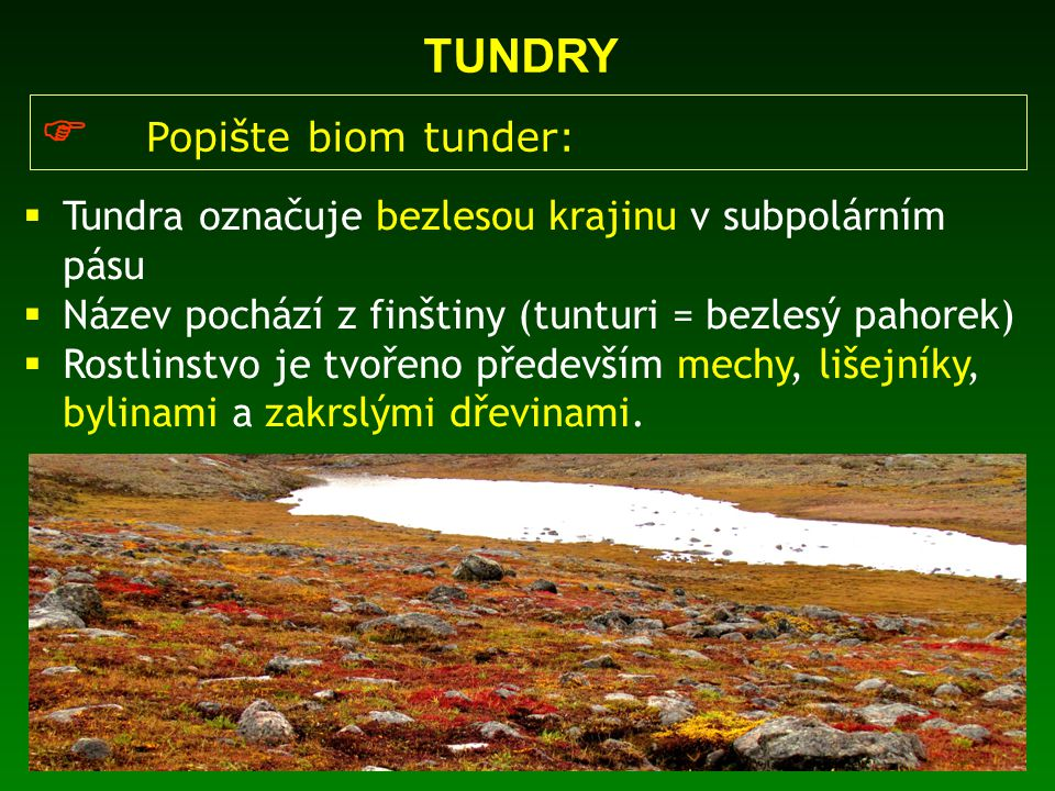 TUNDRY  Popište biom tunder:  Tundra označuje bezlesou krajinu v subpolárním pásu  Název pochází z finštiny (tunturi = bezlesý pahorek)  Rostlinst