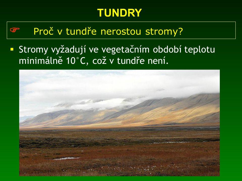 TUNDRY  Proč v tundře nerostou stromy?  Stromy vyžadují ve vegetačním období teplotu minimálně 10°C, což v tundře není.