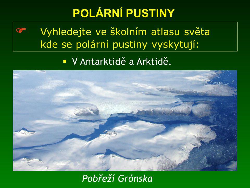  Většina živočichů polárních pustin žije v moři, kde je dostatek planktonu, nebo na pobřeží  Typickými zástupci arktických pustin jsou mrož, tuleň nebo medvěd lední  Antarktickou faunu reprezentují například tučňáci POLÁRNÍ PUSTINY  Jaká zvířata žijí v polárních pustinách?