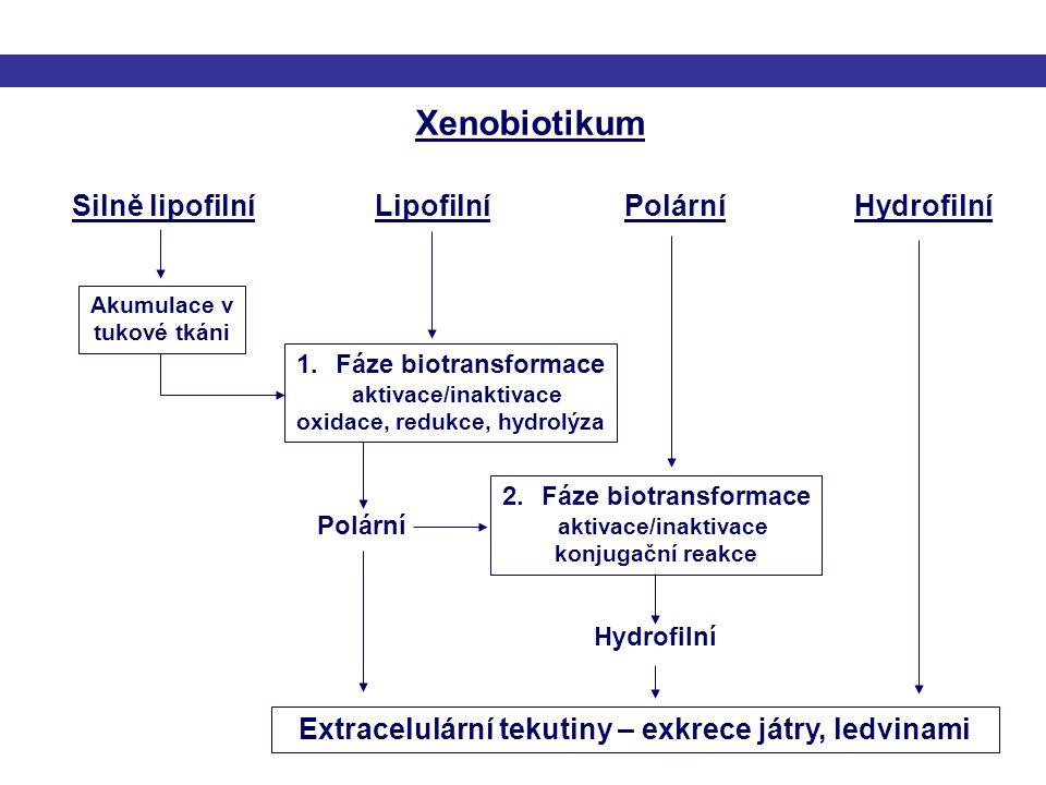 Xenobiotikum Silně lipofilníLipofilníPolárníHydrofilní 1.Fáze biotransformace aktivace/inaktivace oxidace, redukce, hydrolýza 2.Fáze biotransformace a
