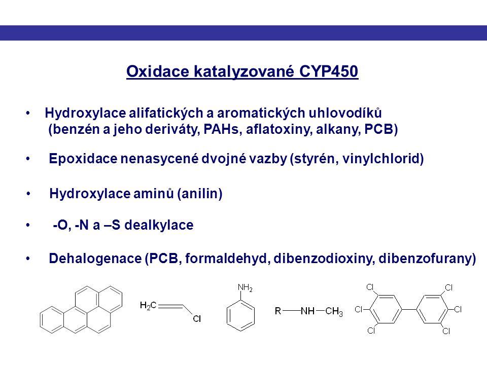 Hydroxylace alifatických a aromatických uhlovodíků (benzén a jeho deriváty, PAHs, aflatoxiny, alkany, PCB) Epoxidace nenasycené dvojné vazby (styrén,