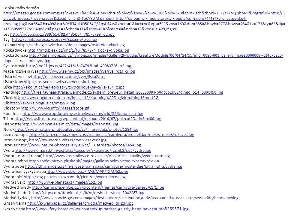Lebka kočky domácí http://images.google.com/imgres?q=savci+%C5%A1elmy+chrup&hl=cs&gbv=2&biw=1366&bih=673&tbm=isch&tbnid=Y_r2zTYpQ7jhpM:&imgrefurl=http