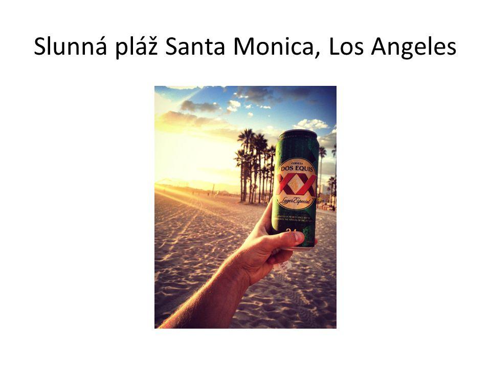 Slunná pláž Santa Monica, Los Angeles