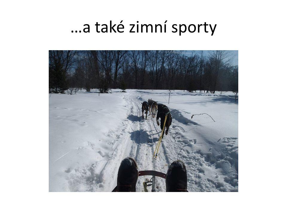 …a také zimní sporty