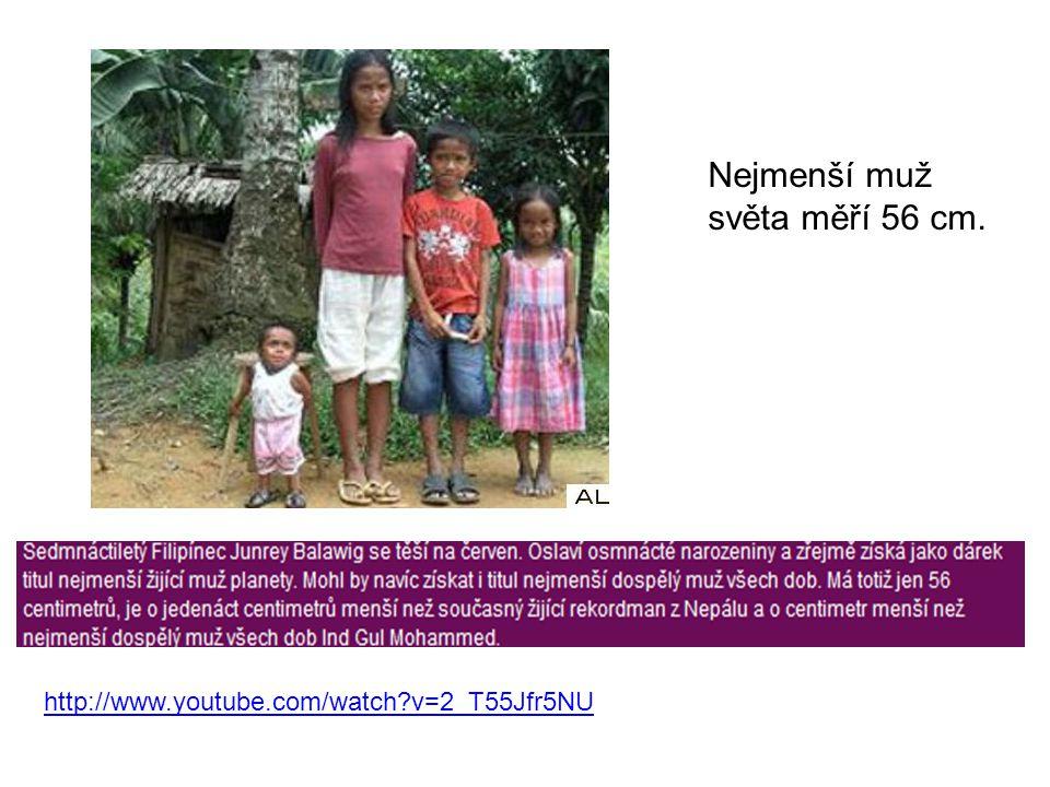 Nejmenší muž světa měří 56 cm. http://www.youtube.com/watch?v=2_T55Jfr5NU