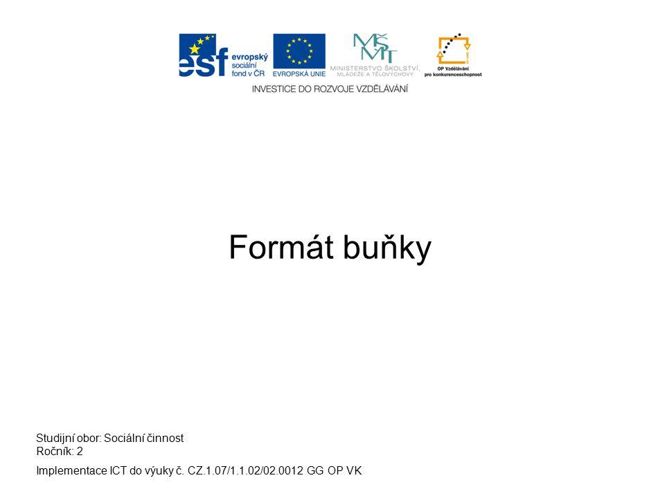 Implementace ICT do výuky č. CZ.1.07/1.1.02/02.0012 GG OP VK Studijní obor: Sociální činnost Ročník: 2 Formát buňky