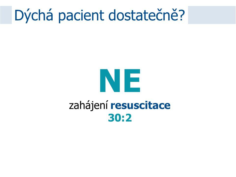 Dýchá pacient dostatečně? NE zahájení resuscitace 30:2