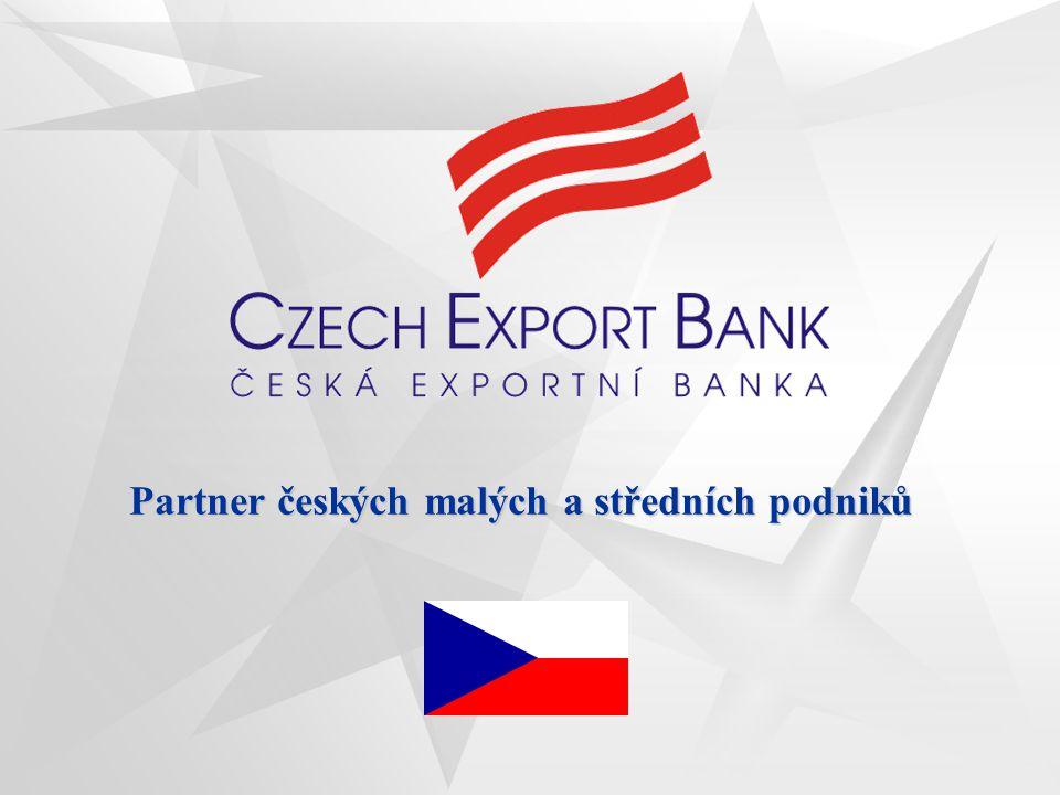Partner českých malých a středních podniků