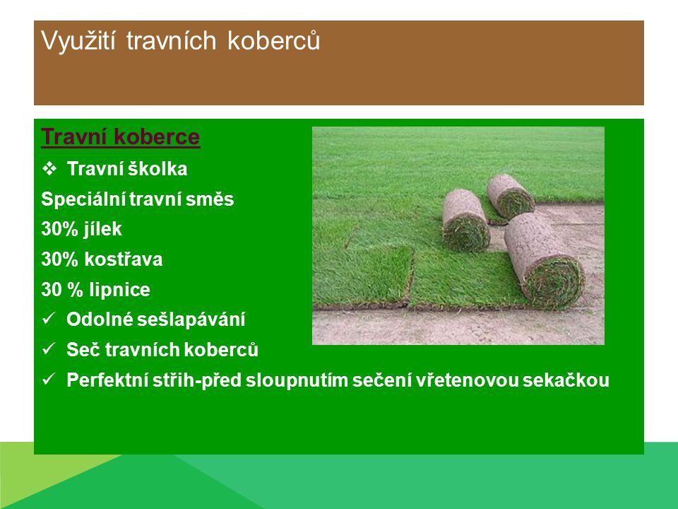 Využití travních koberců Travní koberce  Travní školka Speciální travní směs 30% jílek 30% kostřava 30 % lipnice Odolné sešlapávání Seč travních kobe