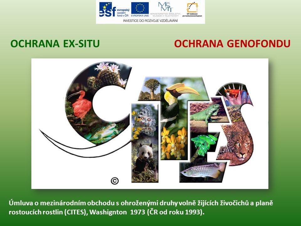 OCHRANA GENOFONDUOCHRANA EX-SITU Úmluva o mezinárodním obchodu s ohroženými druhy volně žijících živočichů a planě rostoucích rostlin (CITES), Washign