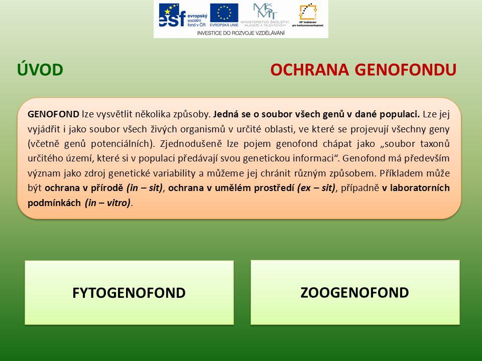 OCHRANA GENOFONDUÚVOD GENOFOND lze vysvětlit několika způsoby. Jedná se o soubor všech genů v dané populaci. Lze jej vyjádřit i jako soubor všech živý