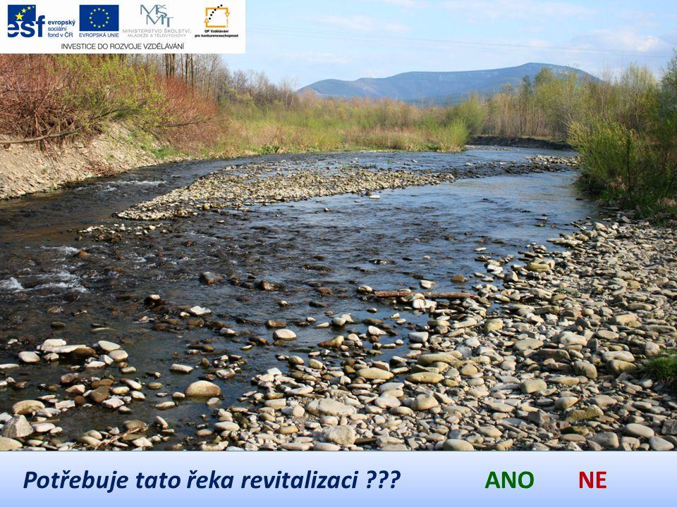 Potřebuje tato řeka revitalizaci ??? ANO NE